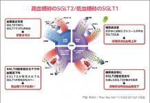 SGLT2的基礎知識