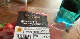 聲稱是今年度最好的草莓
